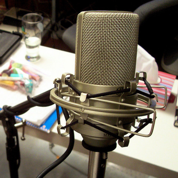 The MXL 990 XLR Microphone